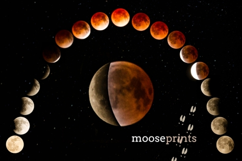 Blood Moon Timelapse.